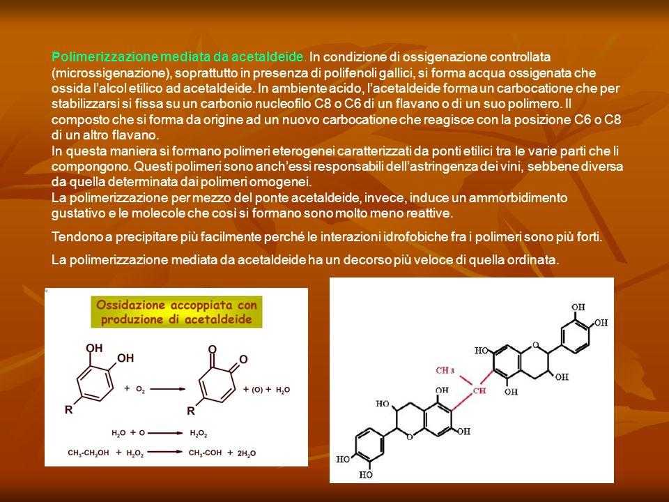 Polimerizzazione mediata da acetaldeide. In condizione di ossigenazione controllata (microssigenazione), soprattutto in presenza di polifenoli gallici