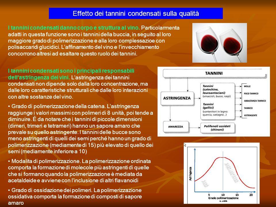 Effetto dei tannini condensati sulla qualità I tannini condensati sono i principali responsabili dellastringenza dei vini. Lastringenza dei tannini co