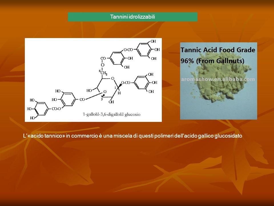 L'«acido tannico» in commercio è una miscela di questi polimeri dell'acido gallico glucosidato Tannini idrolizzabili