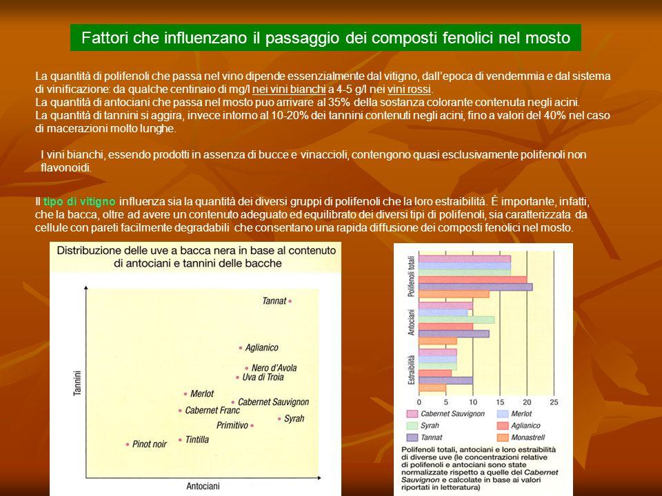 Polimerizzazione mediata da acetaldeide.