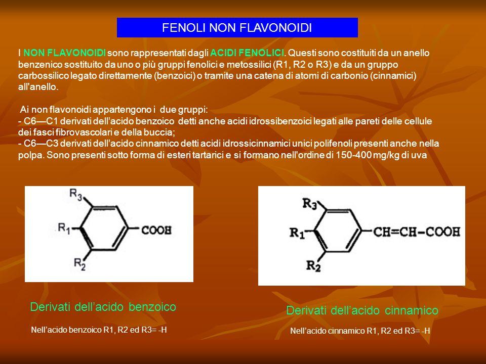 Derivati dellacido benzoico * R1= -H, -OH R2= -H, -OH, -OCH3 R3= -H, -OH, -OCH3 Il derivato più importante è lacido gallico che può essere presente nelluva, ma che deriva in quantità più rilevanti dal legno con cui il vino viene a contatto.