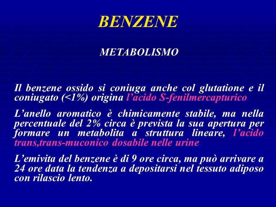 BENZENE METABOLISMO Il benzene ossido si coniuga anche col glutatione e il coniugato (<1%) origina lacido S-fenilmercapturico.