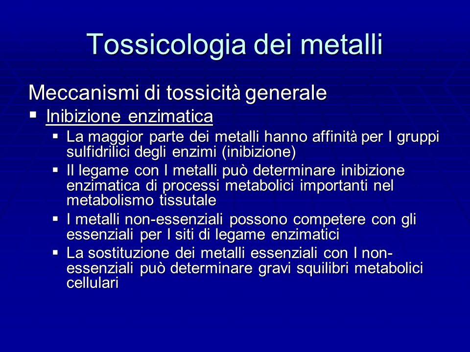 Tossicologia dei metalli Meccanismi di tossicit à generale Inibizione enzimatica Inibizione enzimatica La maggior parte dei metalli hanno affinit à per I gruppi sulfidrilici degli enzimi (inibizione) La maggior parte dei metalli hanno affinit à per I gruppi sulfidrilici degli enzimi (inibizione) Il legame con I metalli può determinare inibizione enzimatica di processi metabolici importanti nel metabolismo tissutale Il legame con I metalli può determinare inibizione enzimatica di processi metabolici importanti nel metabolismo tissutale I metalli non-essenziali possono competere con gli essenziali per I siti di legame enzimatici I metalli non-essenziali possono competere con gli essenziali per I siti di legame enzimatici La sostituzione dei metalli essenziali con I non- essenziali può determinare gravi squilibri metabolici cellulari La sostituzione dei metalli essenziali con I non- essenziali può determinare gravi squilibri metabolici cellulari