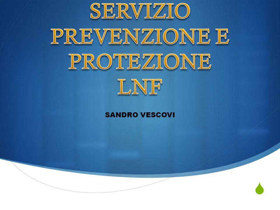 Il Servizio di Prevenzione e Protezione provvede (art.