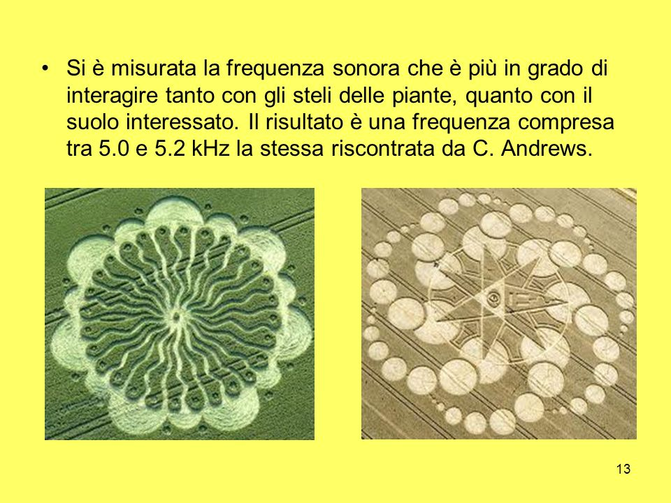 13 Si è misurata la frequenza sonora che è più in grado di interagire tanto con gli steli delle piante, quanto con il suolo interessato. Il risultato