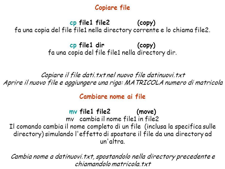 Copiare file cp file1 file2 (copy) fa una copia del file file1 nella directory corrente e lo chiama file2.