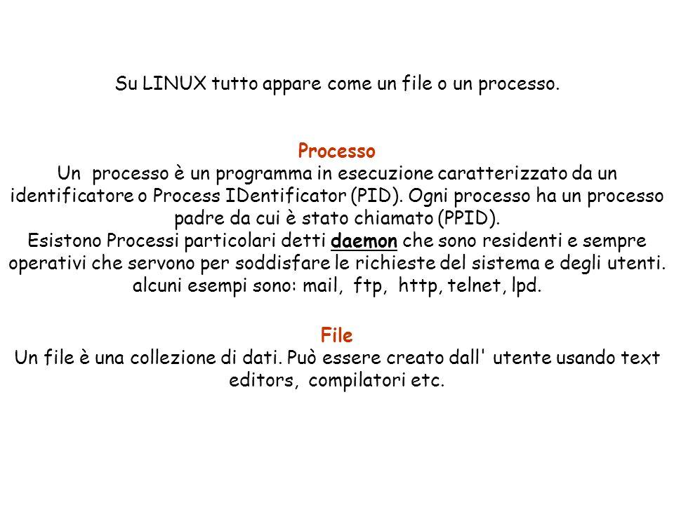 Su LINUX tutto appare come un file o un processo.