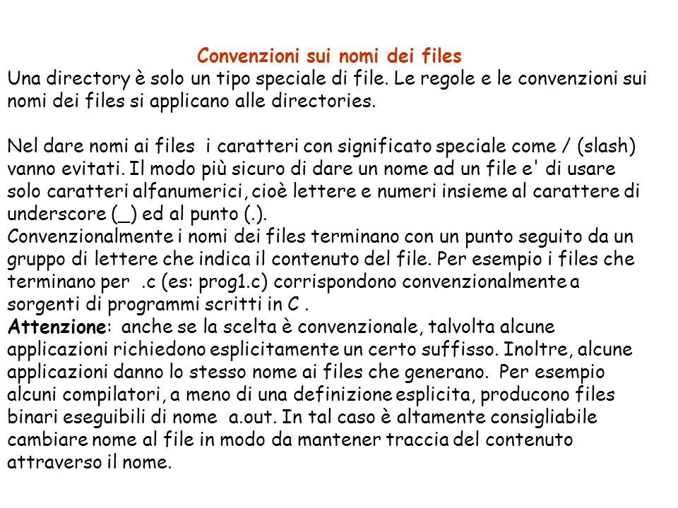 Convenzioni sui nomi dei files Una directory è solo un tipo speciale di file.