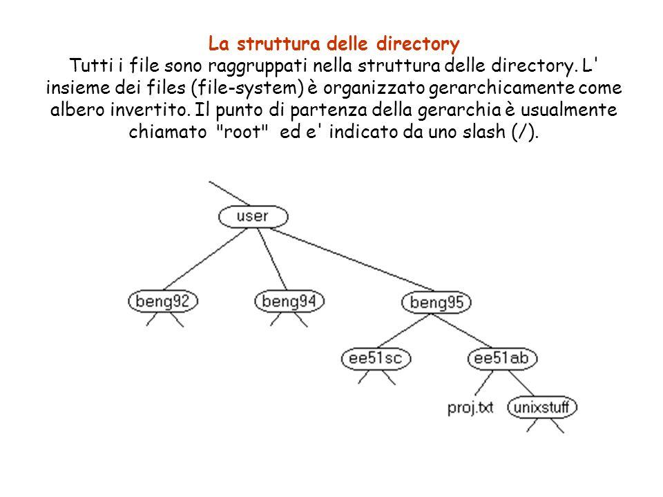 La struttura delle directory Tutti i file sono raggruppati nella struttura delle directory.