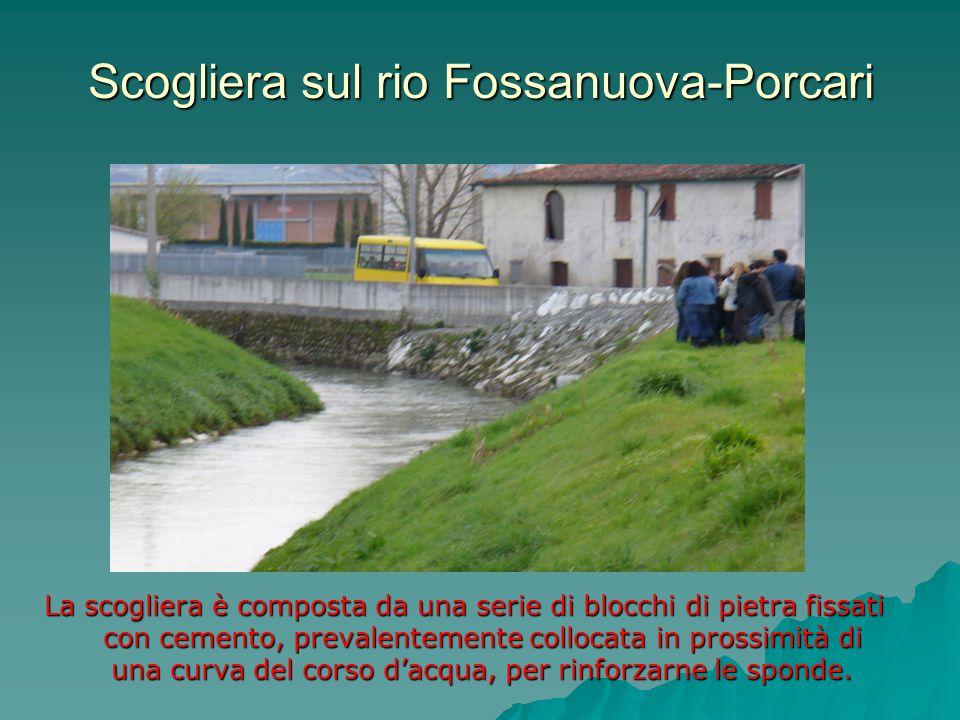 Scogliera sul rio Fossanuova-Porcari La scogliera è composta da una serie di blocchi di pietra fissati con cemento, prevalentemente collocata in pross