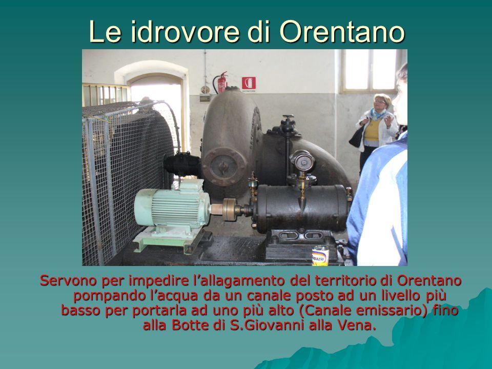 Le idrovore di Orentano Servono per impedire lallagamento del territorio di Orentano pompando lacqua da un canale posto ad un livello più basso per po