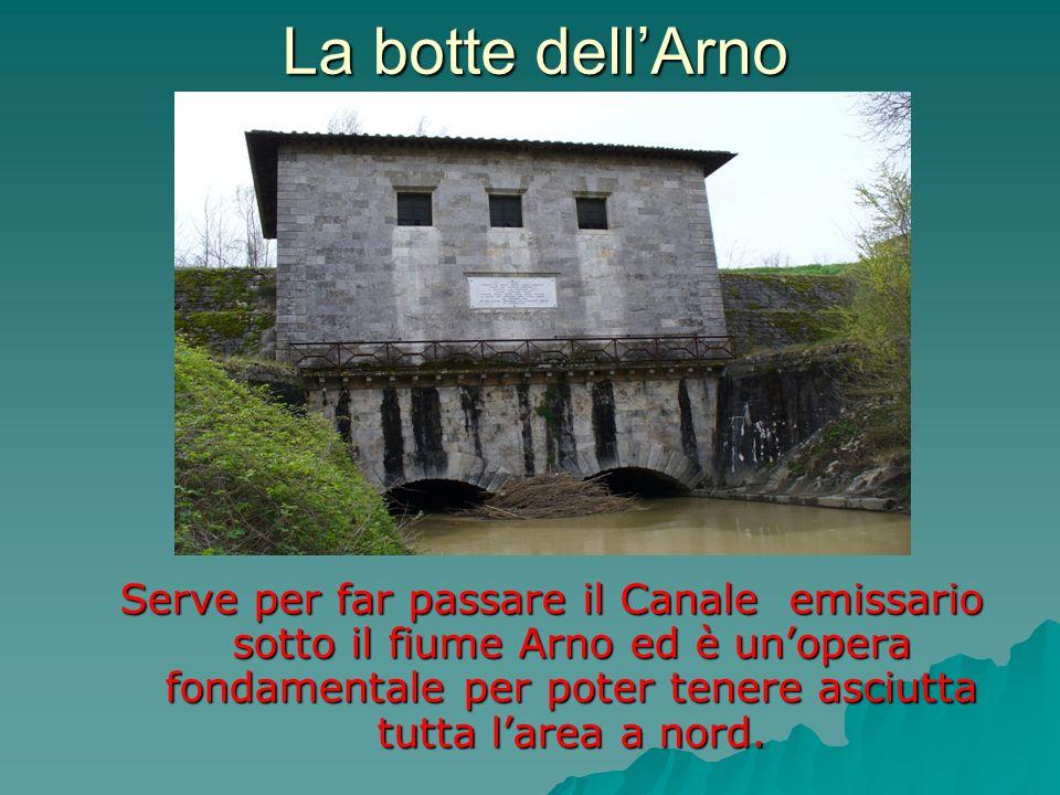 La botte dellArno Serve per far passare il Canale emissario sotto il fiume Arno ed è unopera fondamentale per poter tenere asciutta tutta larea a nord
