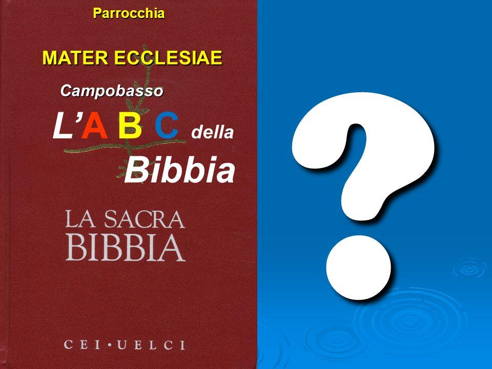 ? Parrocchia MATER ECCLESIAE MATER ECCLESIAE Campobasso Campobasso LA B C della Bibbia