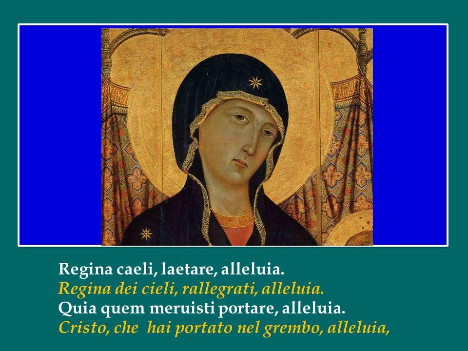 Ora, nella luce pasquale, frutto dello Spirito, ci rivolgiamo insieme alla Madre del Signore.