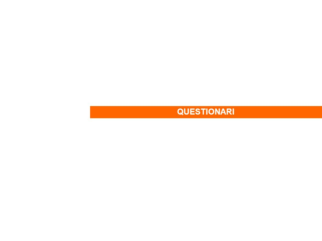intervistati: referenti di associazioni di Torino e provincia, simpatizzanti di IdeexTorino circa 90 questionari ricevuti di cui 21 di soggetti residenti in comuni diversi da Torino