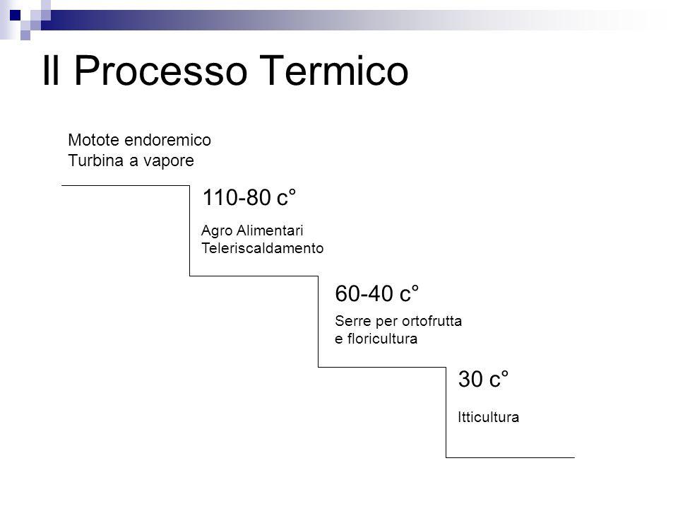 Il Processo Termico Motote endoremico Turbina a vapore 110-80 c° Agro Alimentari Teleriscaldamento 60-40 c° Serre per ortofrutta e floricultura Itticultura 30 c°