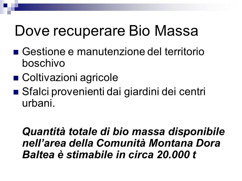 Dove recuperare Bio Massa Gestione e manutenzione del territorio boschivo Coltivazioni agricole Sfalci provenienti dai giardini dei centri urbani.