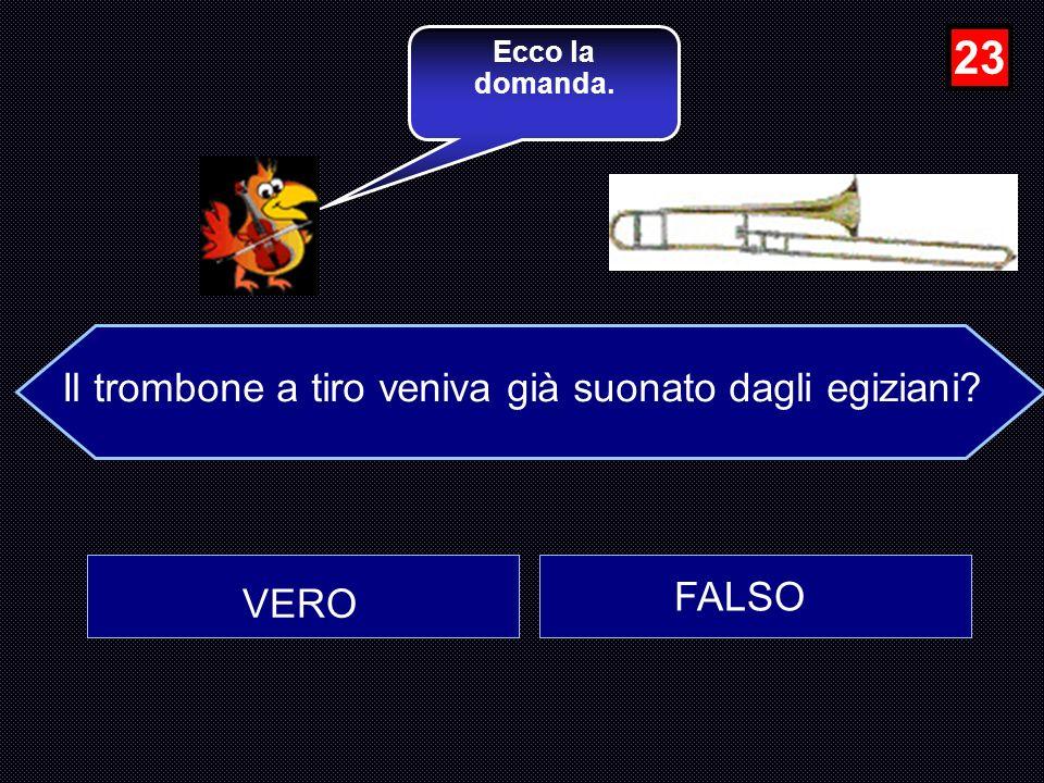Quello in figura è un saxofono di tipo Tenore? VERO FALSO Sei giunto alla 22a domanda. 22