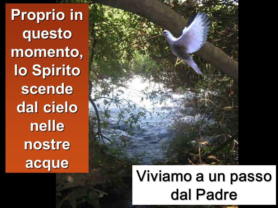 E, subito, uscendo dallacqua, vide squarciarsi i cieli e lo Spirito discendere verso di lui come una colomba.
