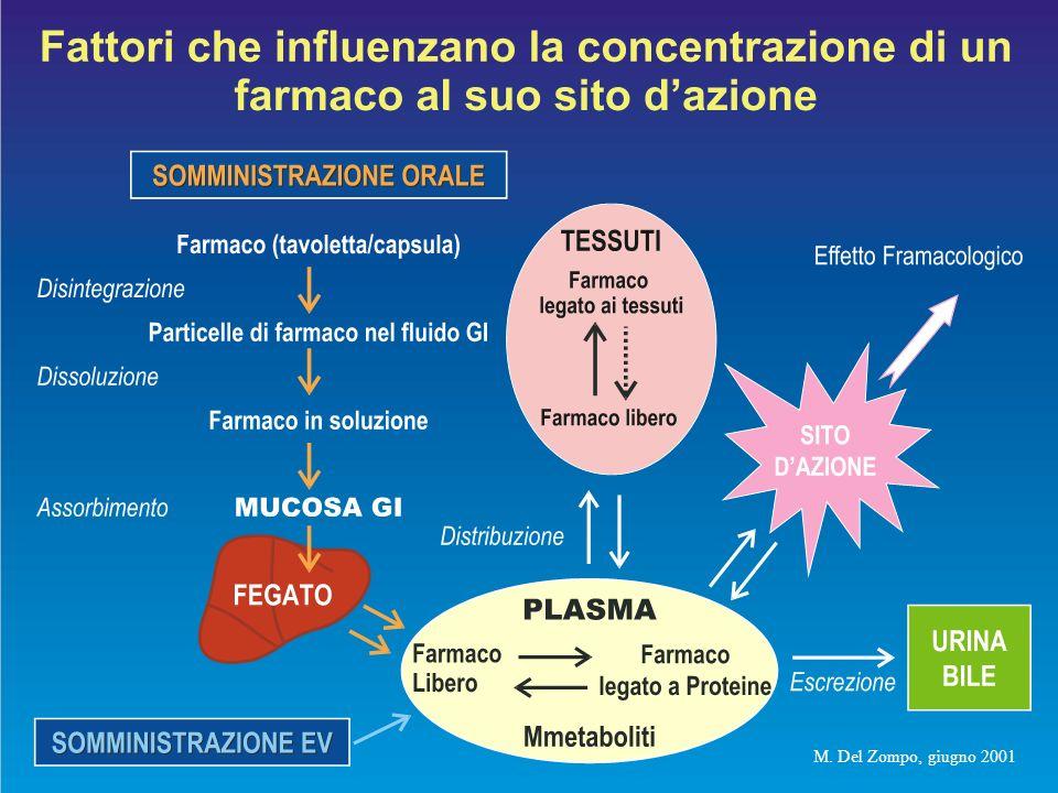 Bile Rene Enterocita Piccolo Intestino Circolazione Sistemica Sistema Portale Circolazione-Interfaccia Tissutale Es.: Barriera Ematoencefalica Tessuto