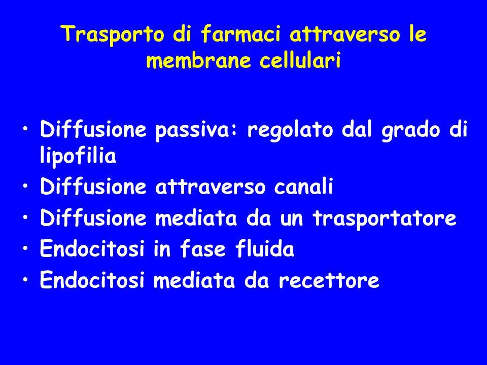 Fattori che influenzano la diffusione passiva attraverso le membrane cellulari
