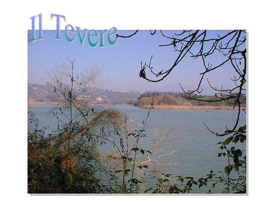 A Ventotene ci sono due porti chiamati Porto Nuovo e Porto Vecchio.