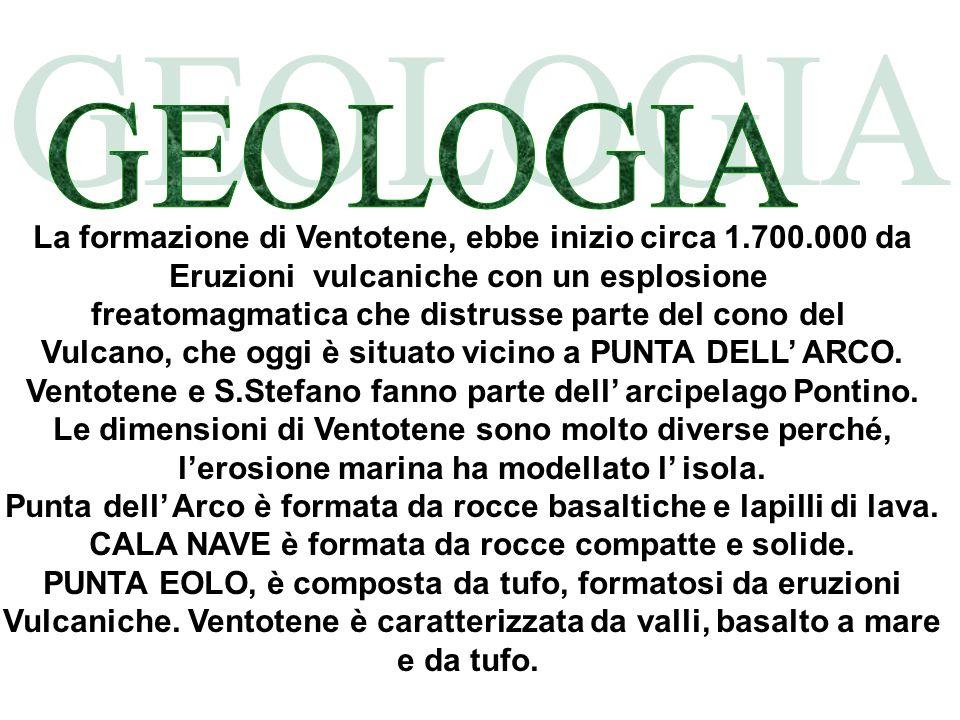 La formazione di Ventotene, ebbe inizio circa 1.700.000 da Eruzioni vulcaniche con un esplosione freatomagmatica che distrusse parte del cono del Vulc