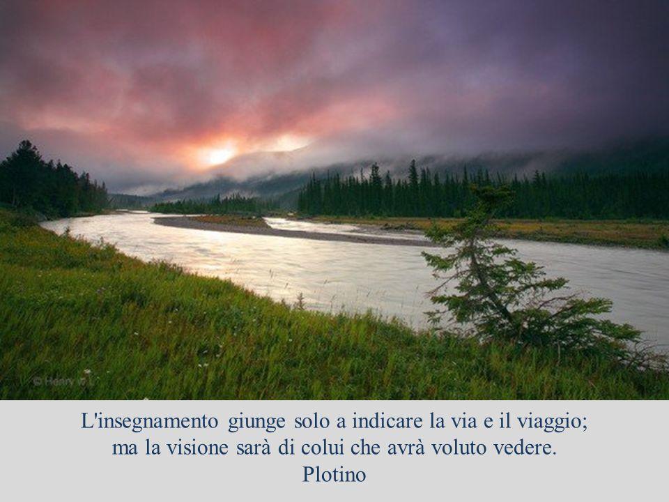 L arte è una collaborazione tra l uomo e Dio, e meno l uomo fa, meglio è. André Gide
