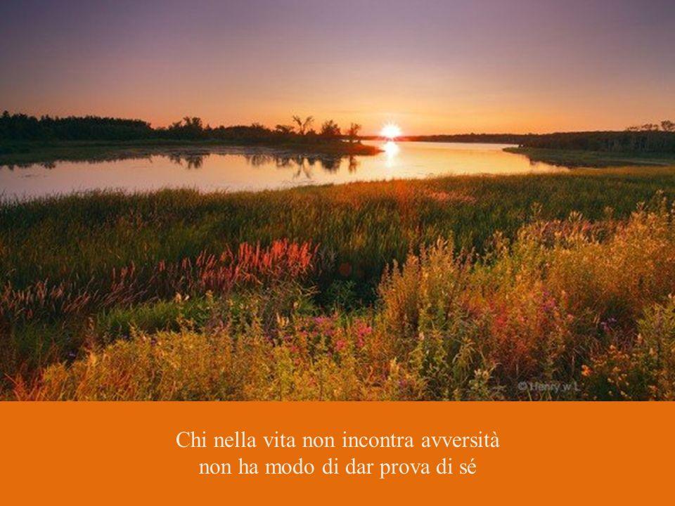 L'insegnamento giunge solo a indicare la via e il viaggio; ma la visione sarà di colui che avrà voluto vedere. Plotino