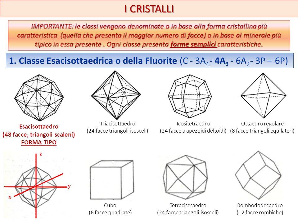 I CRISTALLI Esacisottaedro (48 facce, triangoli scaleni) FORMA TIPO IMPORTANTE: le classi vengono denominate o in base alla forma cristallina più cara