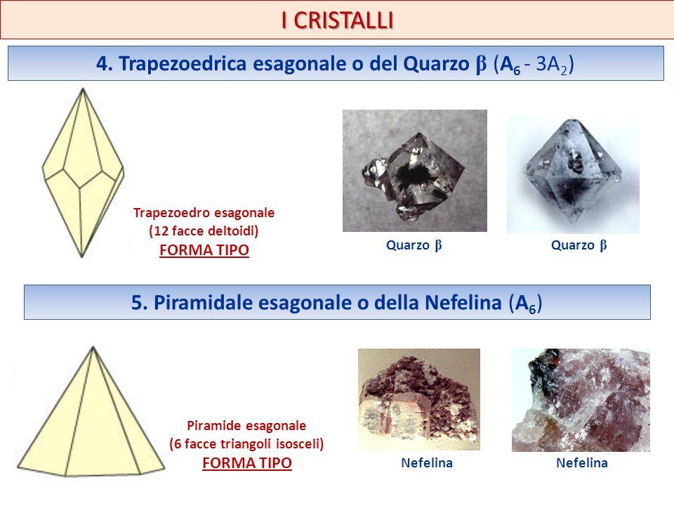 I CRISTALLI 4. Trapezoedrica esagonale o del Quarzo β (A 6 - 3A 2 ) Trapezoedro esagonale (12 facce deltoidi) FORMA TIPO 5. Piramidale esagonale o del