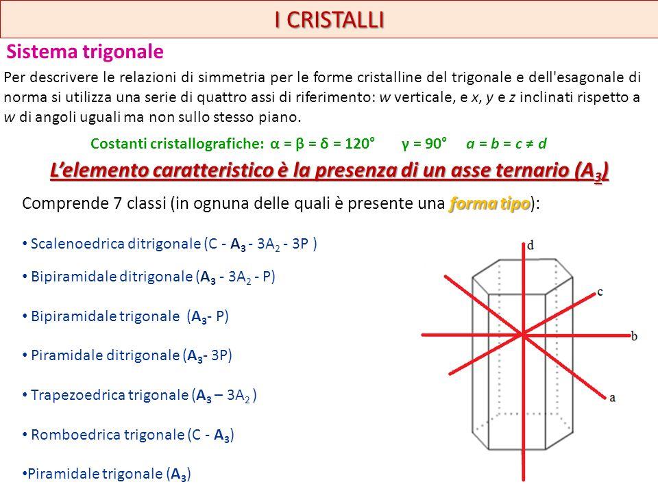 I CRISTALLI Sistema trigonale forma tipo Comprende 7 classi (in ognuna delle quali è presente una forma tipo): Scalenoedrica ditrigonale (C - A 3 - 3A