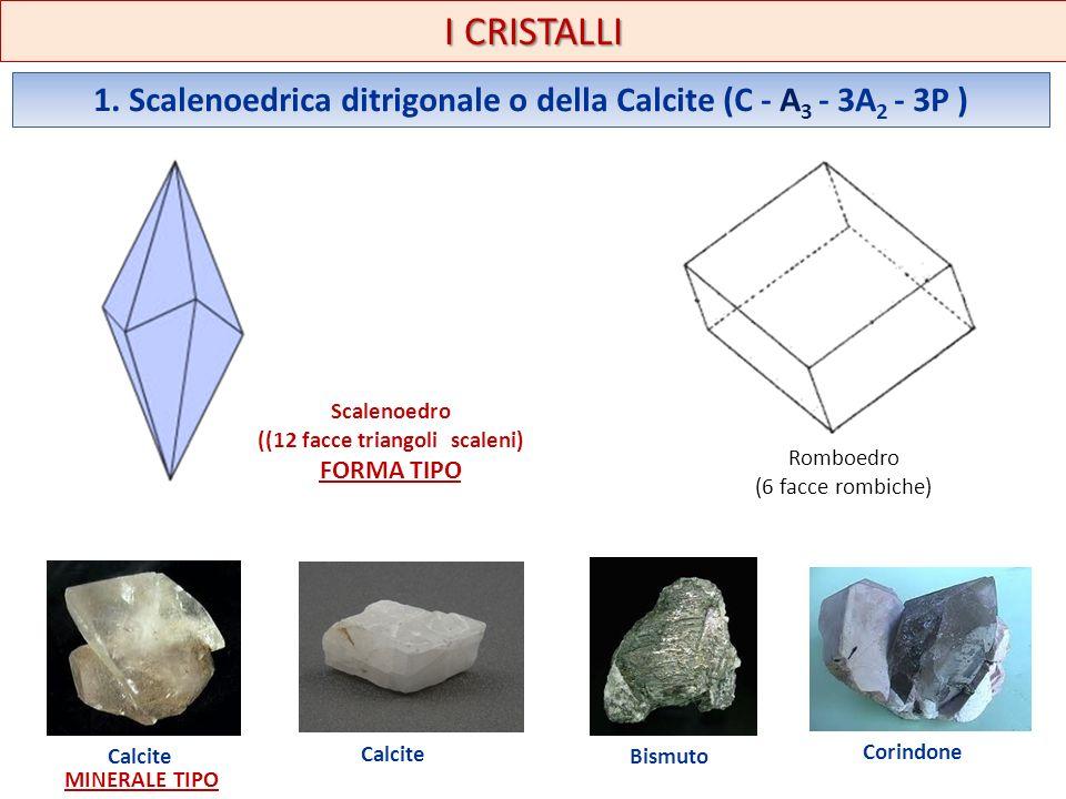 1. Scalenoedrica ditrigonale o della Calcite (C - A 3 - 3A 2 - 3P ) I CRISTALLI Scalenoedro ((12 facce triangoli scaleni) FORMA TIPO Romboedro (6 facc