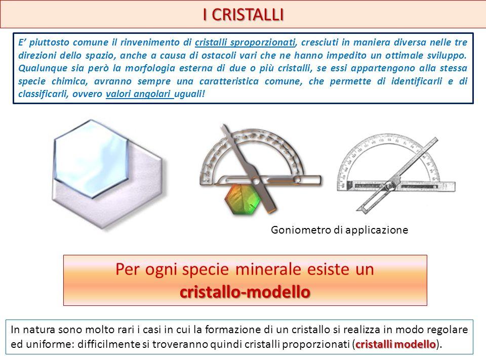 I CRISTALLI Per ogni specie minerale esiste uncristallo-modello cristalli modello In natura sono molto rari i casi in cui la formazione di un cristall