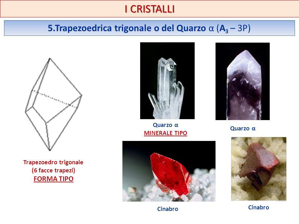 I CRISTALLI 5.Trapezoedrica trigonale o del Quarzo α (A 3 – 3P) Trapezoedro trigonale (6 facce trapezi) FORMA TIPO Quarzo α Cinabro MINERALE TIPO
