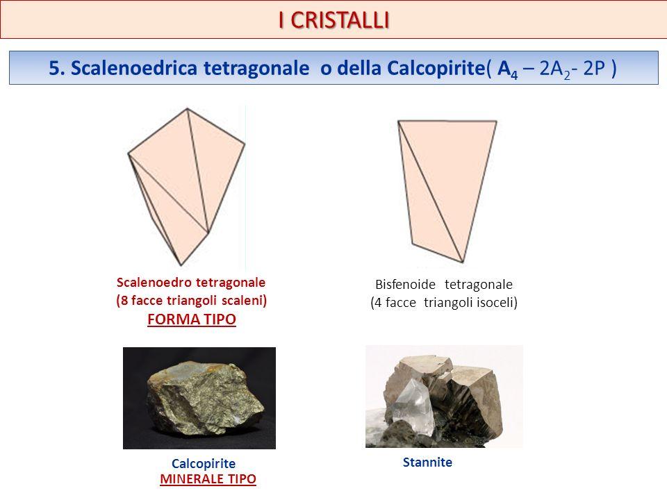 I CRISTALLI 5. Scalenoedrica tetragonale o della Calcopirite( A 4 – 2A 2 - 2P ) Scalenoedro tetragonale (8 facce triangoli scaleni) FORMA TIPO Bisfeno