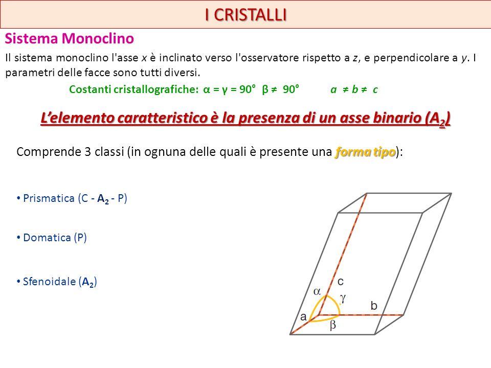 I CRISTALLI Sistema Monoclino forma tipo Comprende 3 classi (in ognuna delle quali è presente una forma tipo): Prismatica (C - A 2 - P) Domatica (P) S
