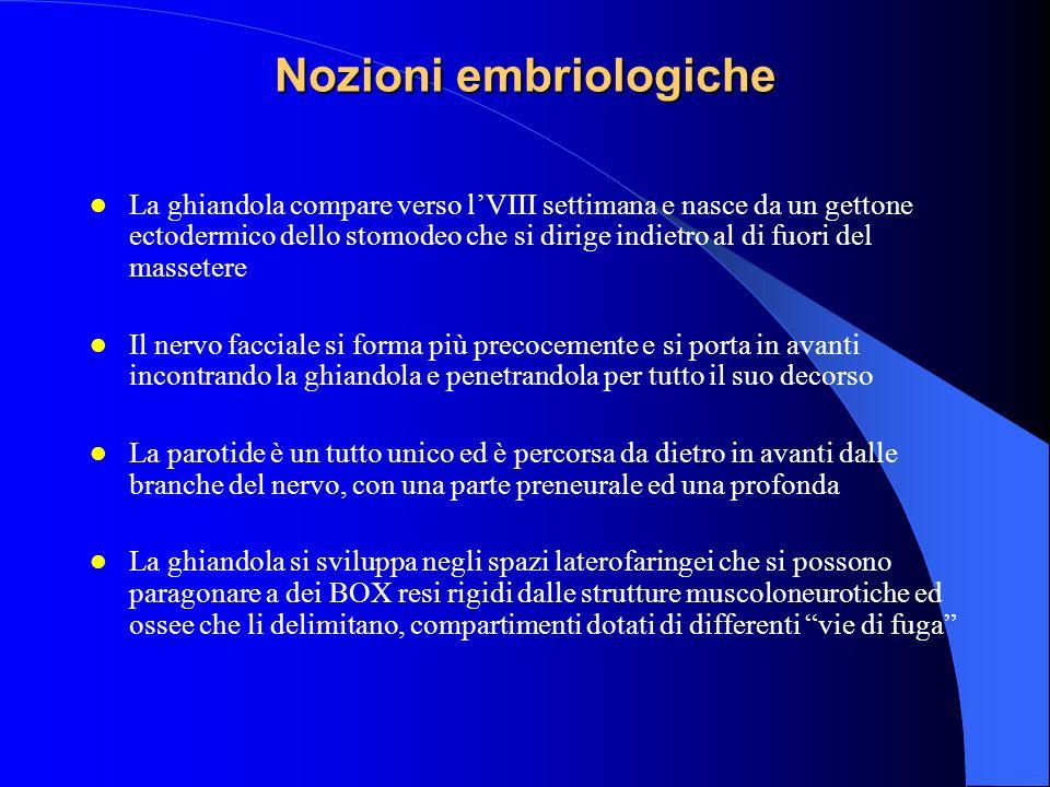 Nozioni embriologiche La ghiandola compare verso lVIII settimana e nasce da un gettone ectodermico dello stomodeo che si dirige indietro al di fuori d