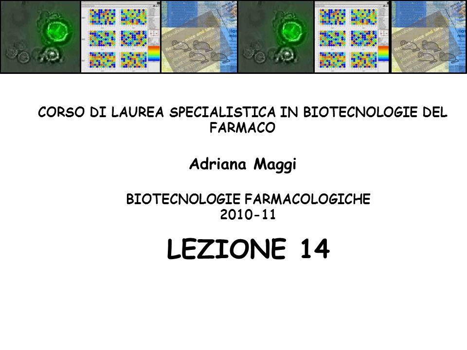 BIOTECNOLOGIE FARMACOLOGICHE 2010-11 LEZIONE 14 CORSO DI LAUREA SPECIALISTICA IN BIOTECNOLOGIE DEL FARMACO Adriana Maggi