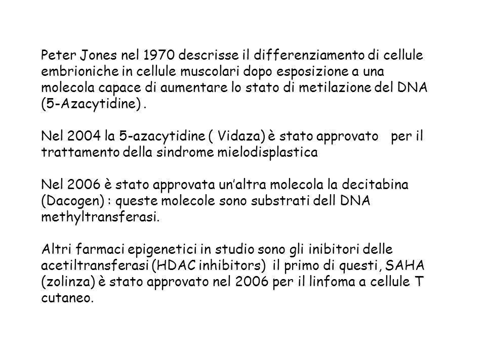 Peter Jones nel 1970 descrisse il differenziamento di cellule embrioniche in cellule muscolari dopo esposizione a una molecola capace di aumentare lo