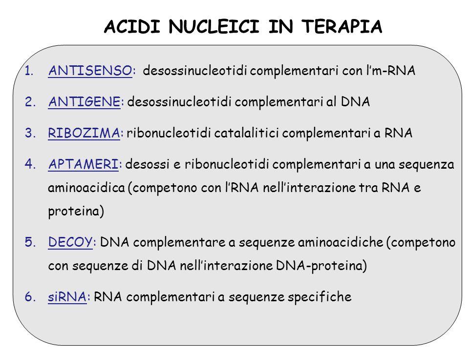 ACIDI NUCLEICI IN TERAPIA 1.ANTISENSO: desossinucleotidi complementari con lm-RNA 2.ANTIGENE: desossinucleotidi complementari al DNA 3.RIBOZIMA: ribon