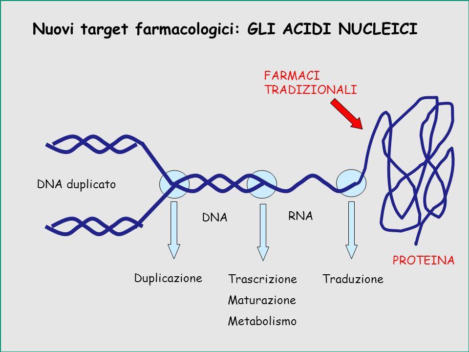 Nuovi target farmacologici: GLI ACIDI NUCLEICI Duplicazione DNA duplicato DNA RNA Trascrizione Maturazione Metabolismo Traduzione PROTEINA FARMACI TRA