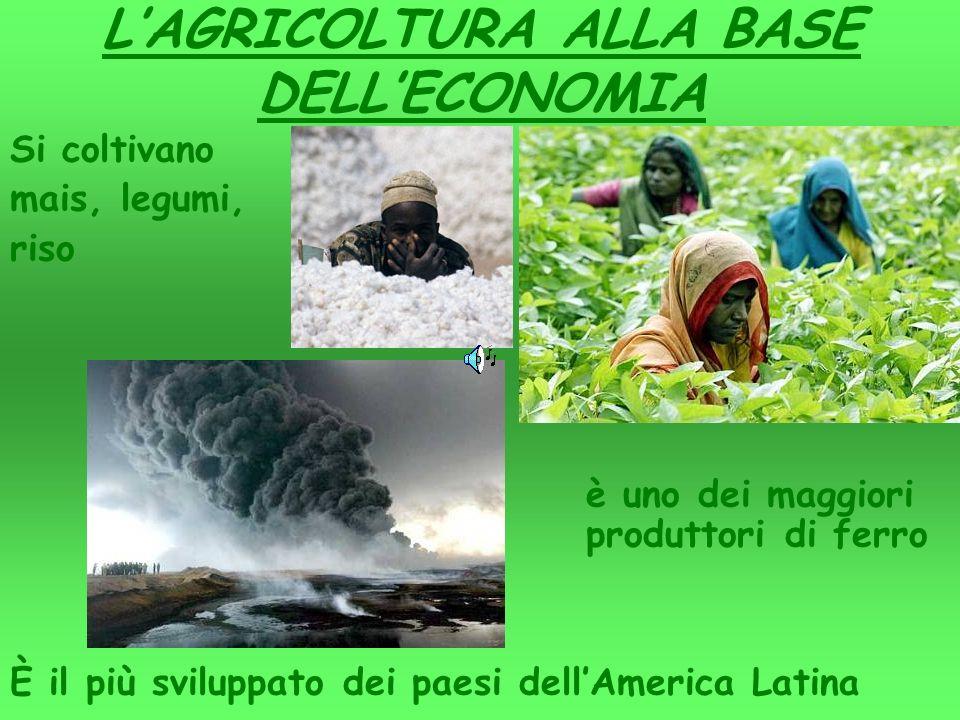 LAGRICOLTURA ALLA BASE DELLECONOMIA Si coltivano mais, legumi, riso è uno dei maggiori produttori di ferro È il più sviluppato dei paesi dellAmerica Latina