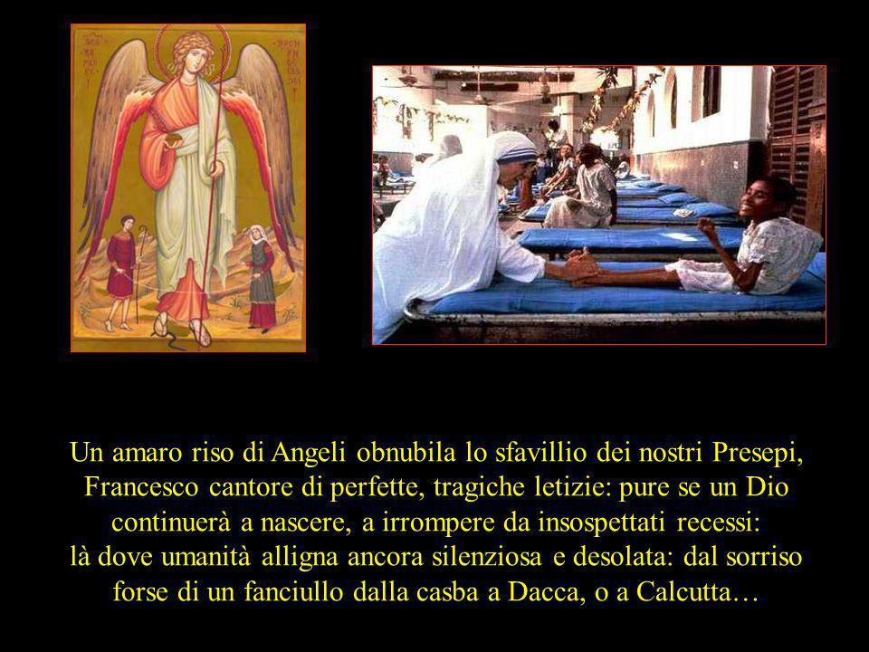 Un amaro riso di Angeli obnubila lo sfavillio dei nostri Presepi, Francesco cantore di perfette, tragiche letizie: pure se un Dio continuerà a nascere