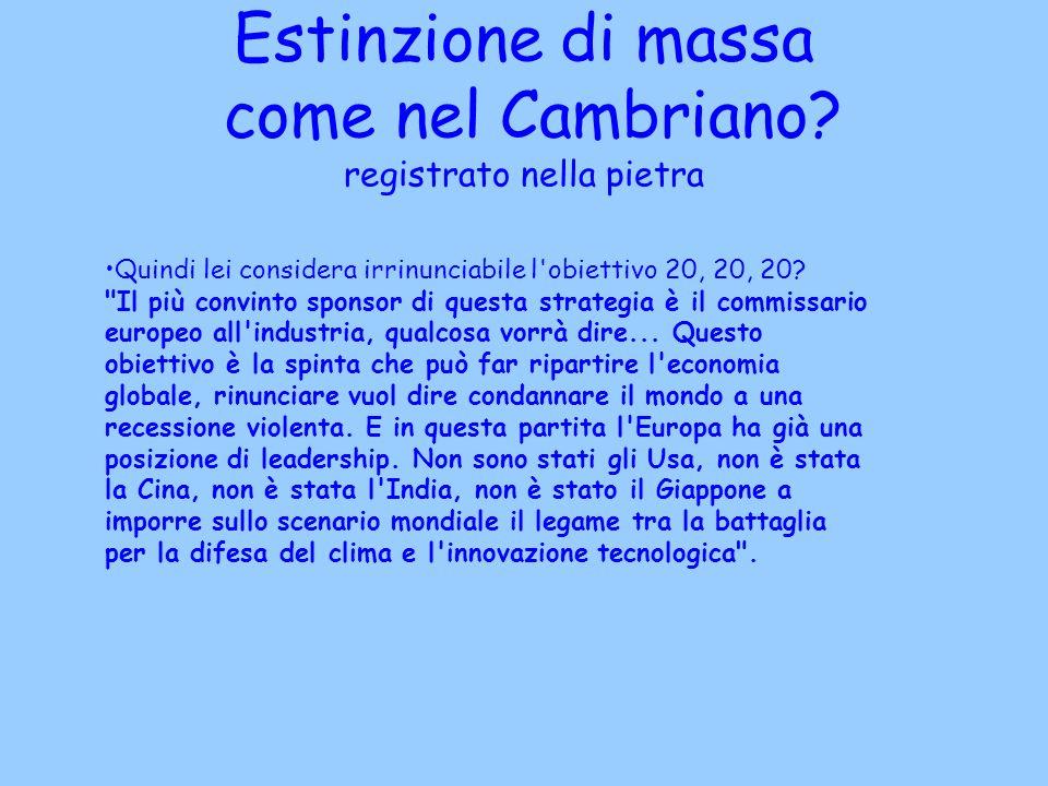 Estinzione di massa come nel Cambriano? registrato nella pietra Quindi lei considera irrinunciabile l'obiettivo 20, 20, 20?
