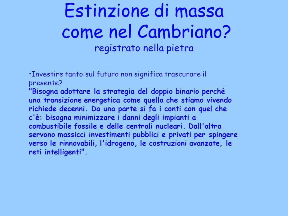 Estinzione di massa come nel Cambriano? registrato nella pietra Investire tanto sul futuro non significa trascurare il presente?