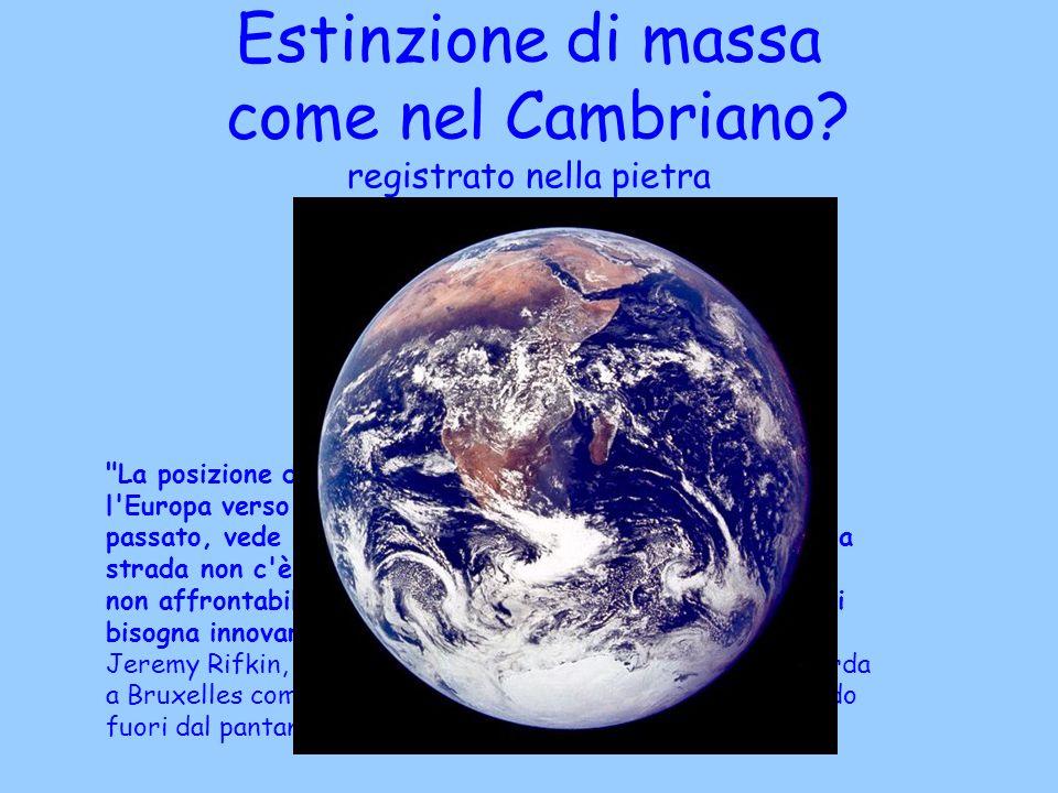 Estinzione di massa come nel Cambriano? registrato nella pietra