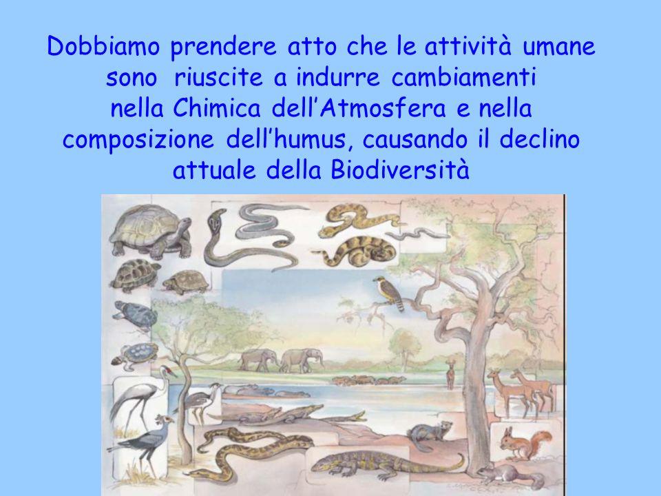 Dobbiamo prendere atto che le attività umane sono riuscite a indurre cambiamenti nella Chimica dellAtmosfera e nella composizione dellhumus, causando