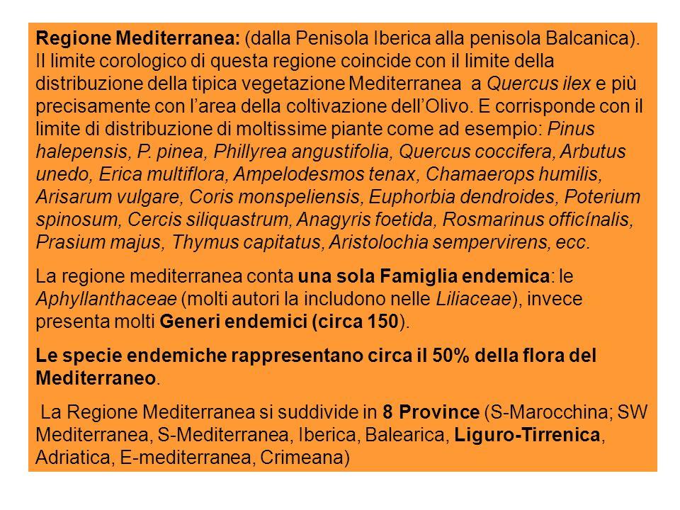 Regione Mediterranea: (dalla Penisola Iberica alla penisola Balcanica).