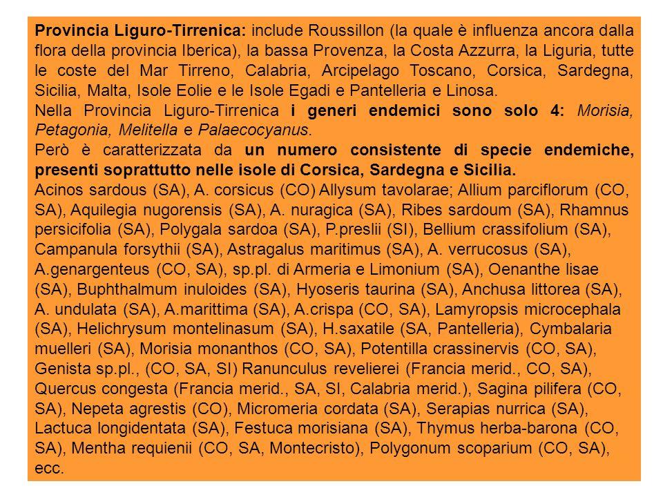 Provincia Liguro-Tirrenica: include Roussillon (la quale è influenza ancora dalla flora della provincia Iberica), la bassa Provenza, la Costa Azzurra, la Liguria, tutte le coste del Mar Tirreno, Calabria, Arcipelago Toscano, Corsica, Sardegna, Sicilia, Malta, Isole Eolie e le Isole Egadi e Pantelleria e Linosa.